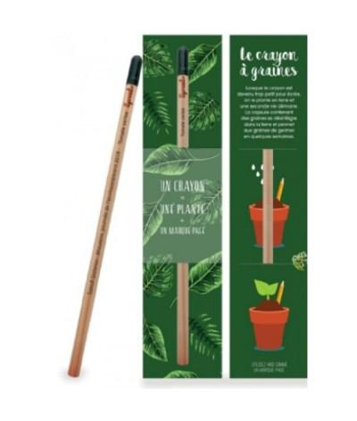 Crayon à papier à planter en fin d'utilisation