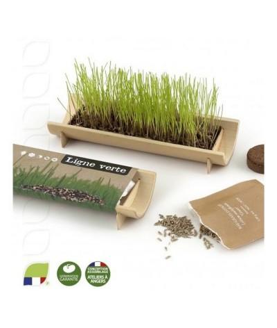 Kit de plantation en bambou naturel avec graines