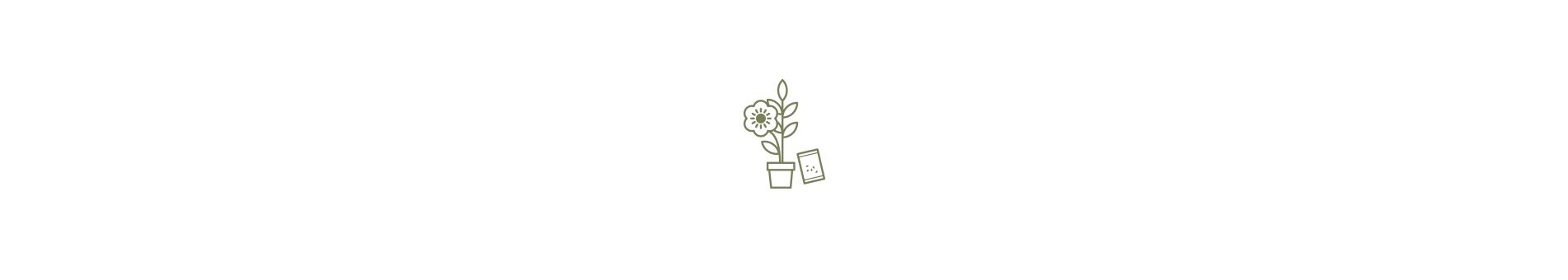 Fleurs - Nature - Plantes